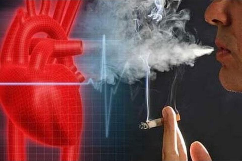 povezava med kajenjem in pljucnim rakom
